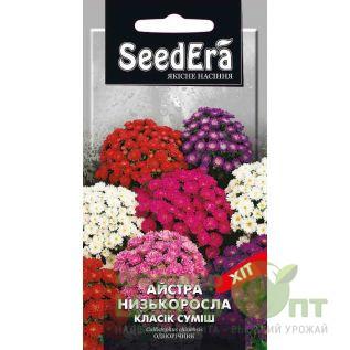 Семена Астра низкорослая Классик Смесь 0,25 г (SeedEra)