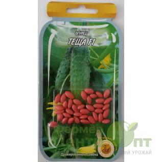 Дражированные семена Огурец Теща F1, скороспелый, 45-55 шт. (L A)