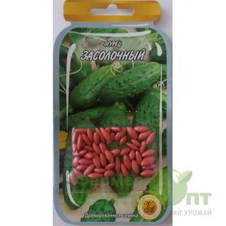 Дражированные семена Огурец Засолочный, среднеспелый, 45-55 шт. (L A)