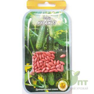 Дражированные семена Огурец Кураж F1, скороспелый, 45-55 шт. (L A)