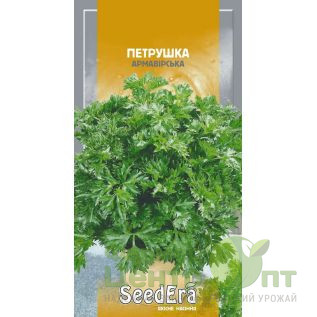 Семена Петрушка Армавирская (листовая), раннеспелая, 20 г (SeedEra)