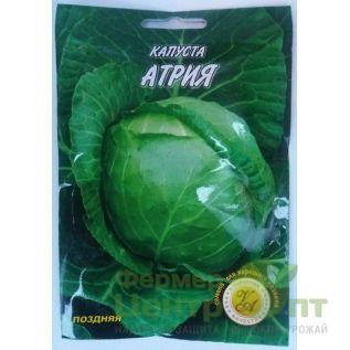 Семена Капуста Артия, позднеспелая, 5 г (L A)